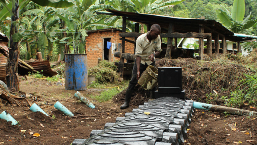 Bringing better biodigesters and clean energy to Africa