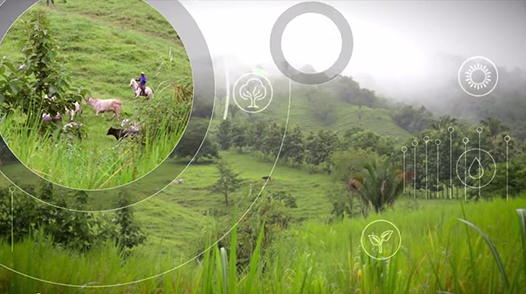 Climate-smart agriculture in Costa Rica, video