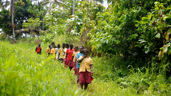 Students from Aravira Primary School in central Bougainville, Papua New Guinea on their walk to school - which for some, takes up to four hours