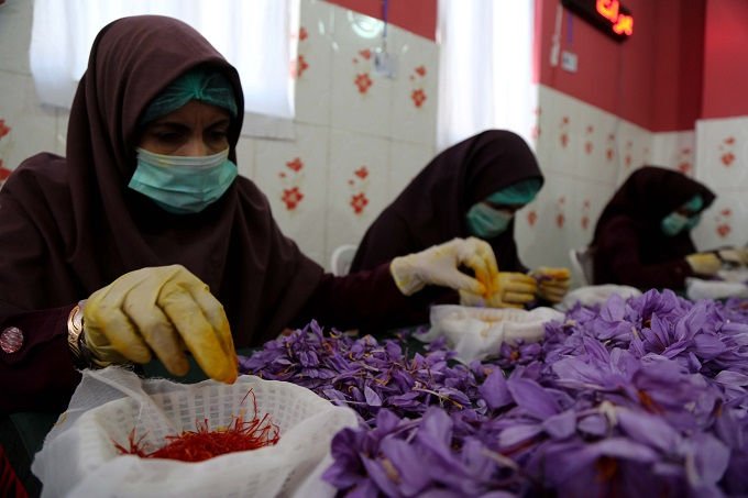 Afghanistan's saffron was named the best saffron in the world for a third time.  The International Taste and Quality Institute Brussels, Belgium awarded the accolade after examining some 300 samples in 2016.