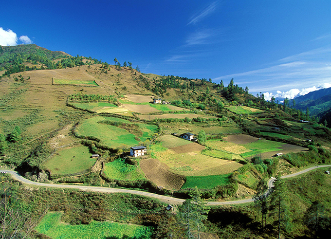 Landscape of terrace fields and homes. Bhutan