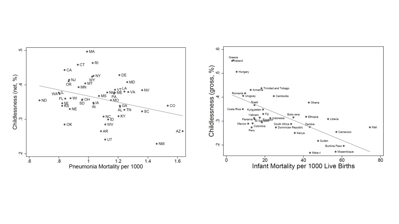 Work and see? Child mortality decline, fertility delay and women's