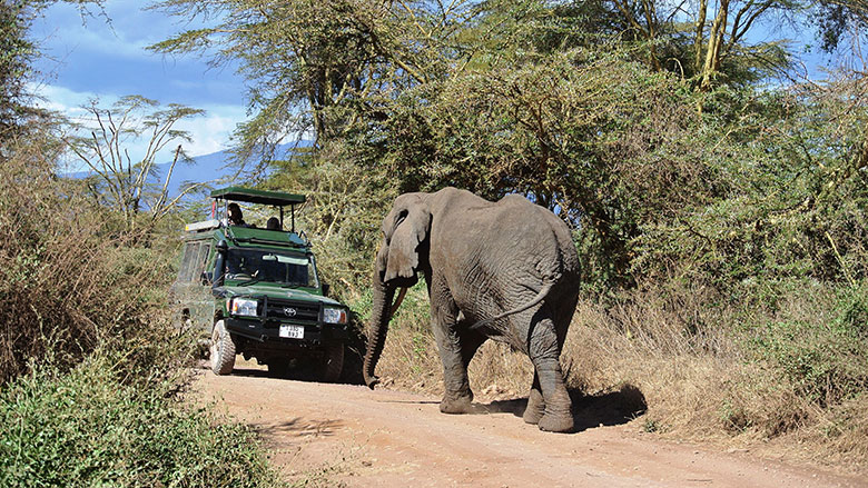 Africa can Benefit from Nature-based Tourism in a Sustainable Manner
