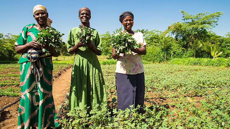Climate-smart agriculture: Lessons from Africa, for the World