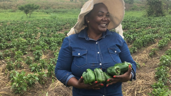 Florinda Chilumbo, a farmer who has 200 hectares planted with fruits and vegetables. Photo credit: Diego Arias Carballo