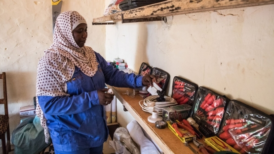 In poor areas of Africa's Sahel, the Sahel Women's Empowerment and Demographic Dividend project (SWEDD) has already provided professional training to almost 100,000 women so they can pursue income-generating activities. Photo: © Vincent Tremeau/World Bank