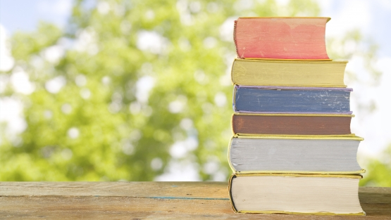 Social Protection Summer Reading List