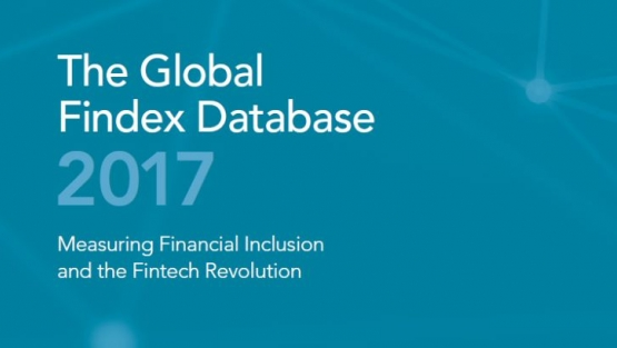 Global Findex Database 2017