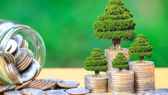 Green investment and business concept | Photo credit: Monthira, Shutterstock