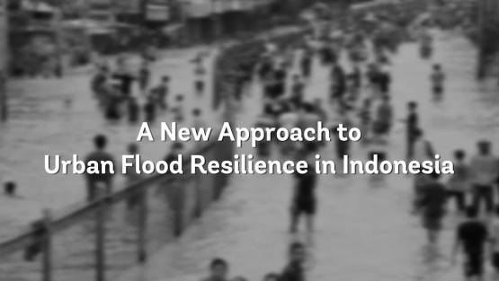 Urban resilience in Indonesia