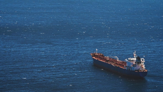An empty cargo ship sails alone in the sea. Photo: sergeisimonov/Shutterstock