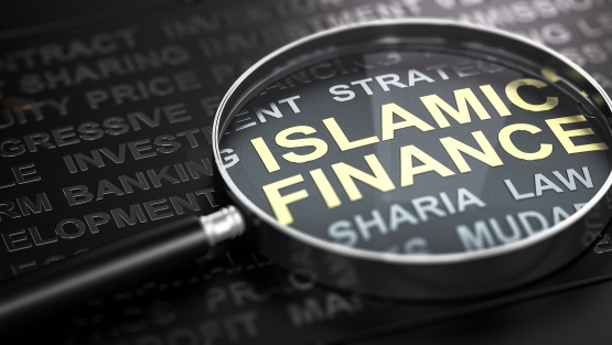 Islamic Finance World Bank Report