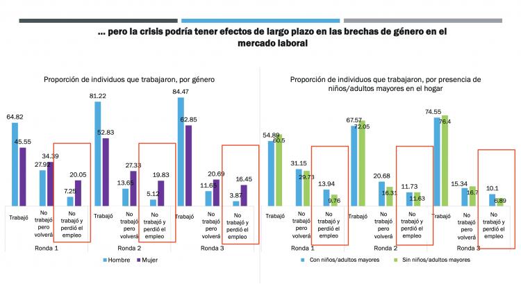 Gráfico de impacto del empleo