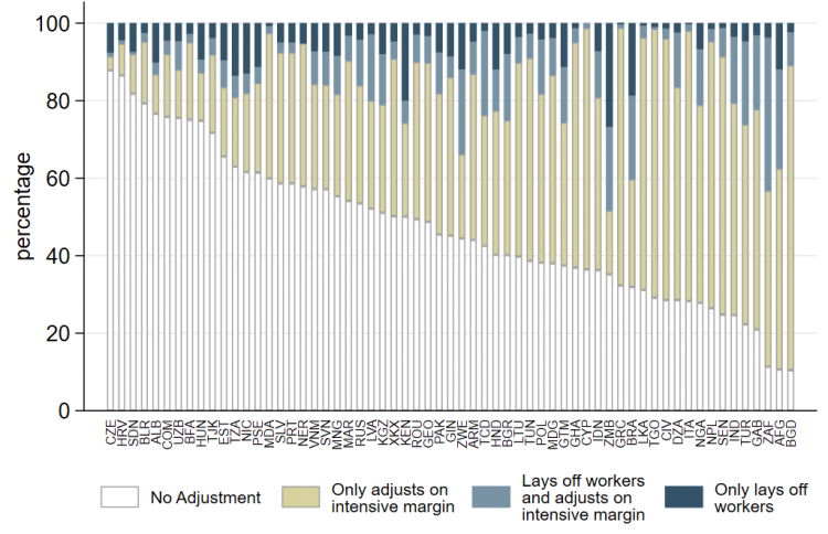 Chart showing percentage of firms making adjustments to their workforce – By country in the sample