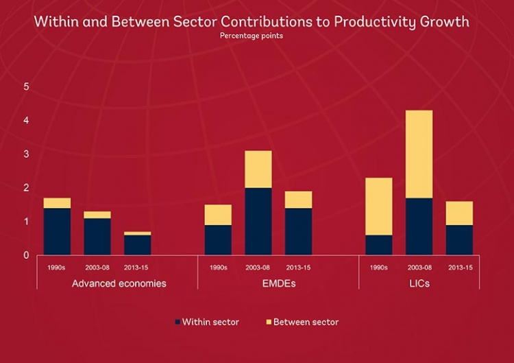 Within and between sector contributions to productivity growth