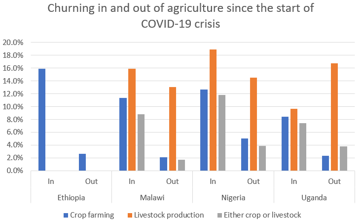 Churning in and out of agriculture since the start of COVID-19 crisis