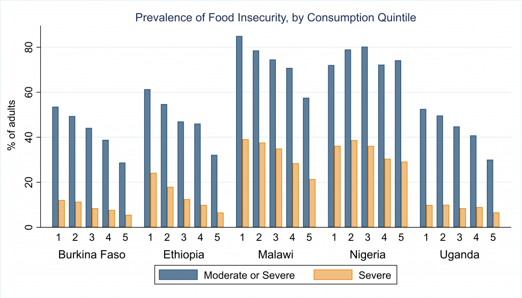 Prevalence of food insecurity by consumption quintile