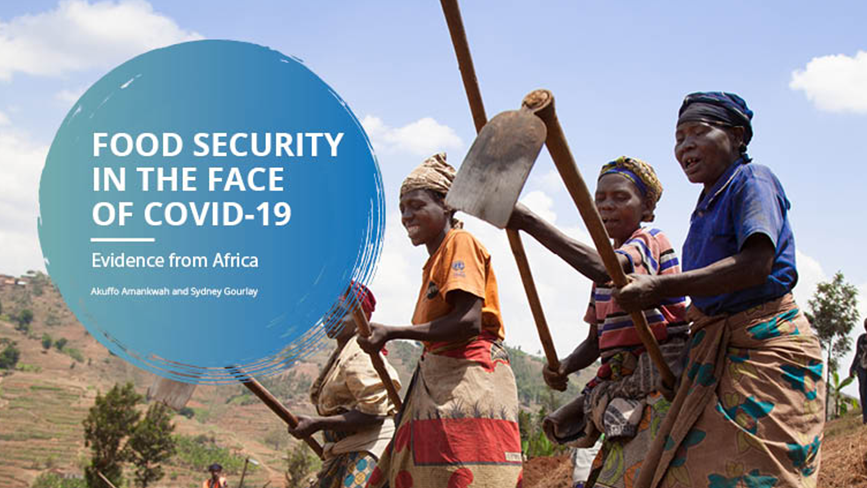 Food security in the face of COVID-19: Evidence from Africa