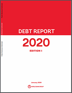 Debt Report 2020 1st Edition