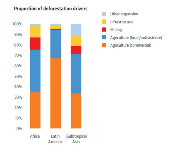 Figure 1: Local and commercial agriculture are responsible for up to 80 percent of all deforestation across the developing world.