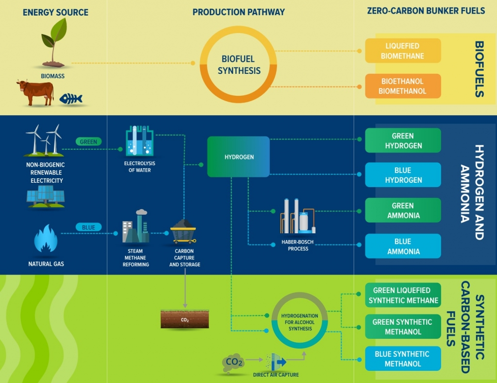 Infographic: fuel options