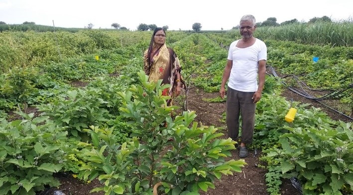 Vimal Rajabhu Yadav with her husband Rajabhau Yadav in their plantation