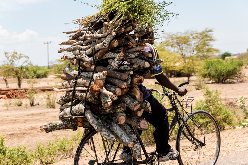 Firewood on bicycles as primary mode of reaching markets, Malawi. © Dejere/Shutterstock.com