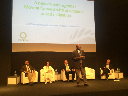 A high-level panel on adaptation-based mitigation at the Global Landscape Forum 2014 in Lima, Peru. (Photo by PROFOR)